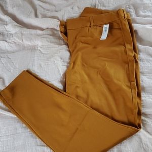 Nwt size 14 Old Navy Pixie Pants mustard/gold